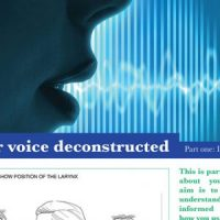 The VoiceeOver Network Voice Deconstructed by Yvonne Morley