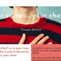 The VoiceeOver Network Your Voice Choice